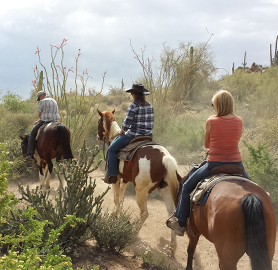 Horse Riding in AZ desert