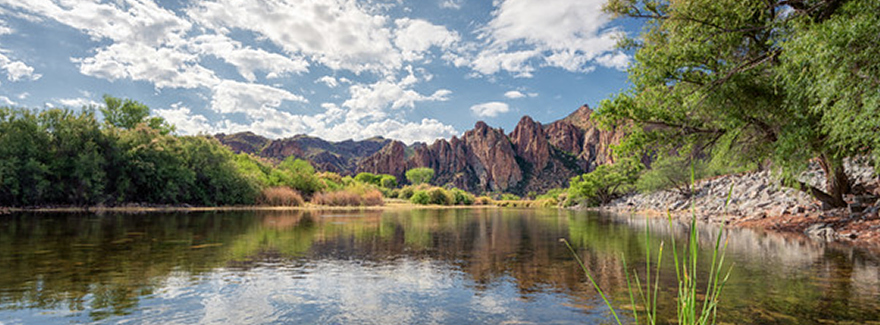 The Salt River At Saguaro Lake Ranch